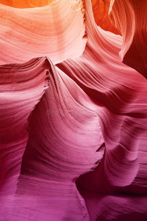 在羚羊峡谷里面的惊人的颜色 免版税图库摄影