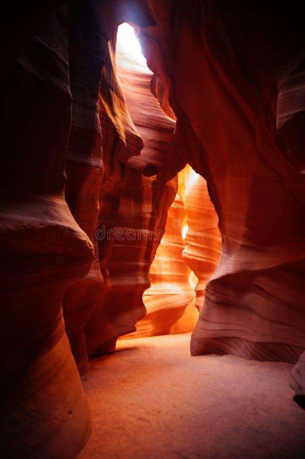 在羚羊峡谷里面 免版税库存照片