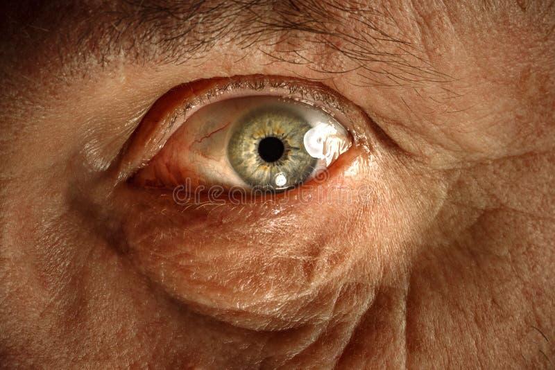 在老人的眼睛的特写镜头视图 库存照片