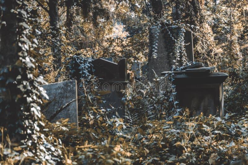 在老公墓的古老理葬 免版税库存图片