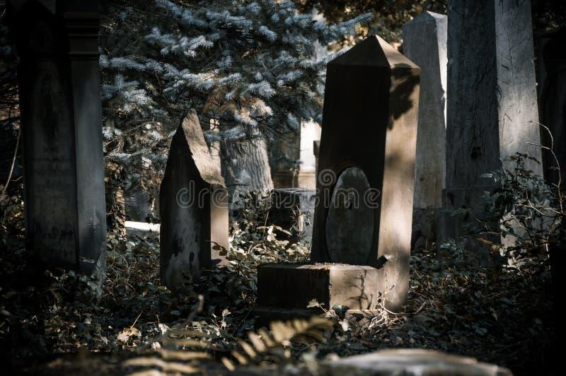 在老公墓的古老理葬 免版税图库摄影