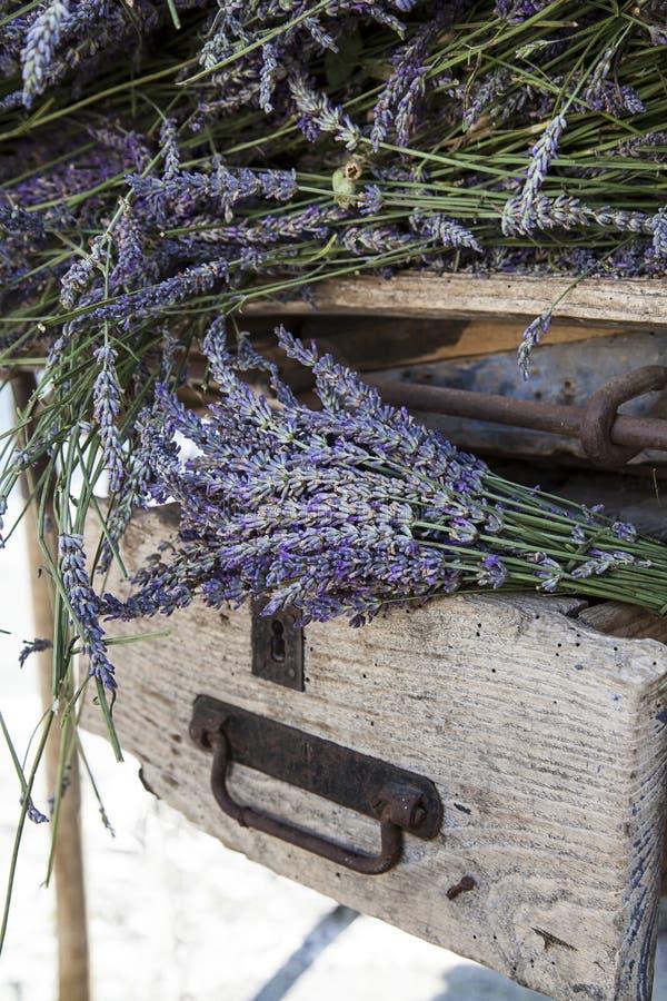 在老土气条板箱的淡紫色花 图库摄影