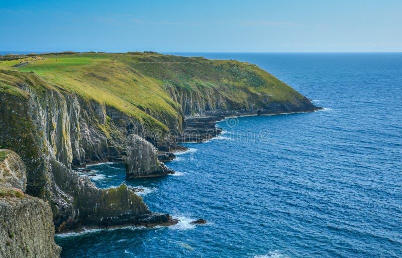 在老头,科克郡,爱尔兰的峭壁 免版税库存图片