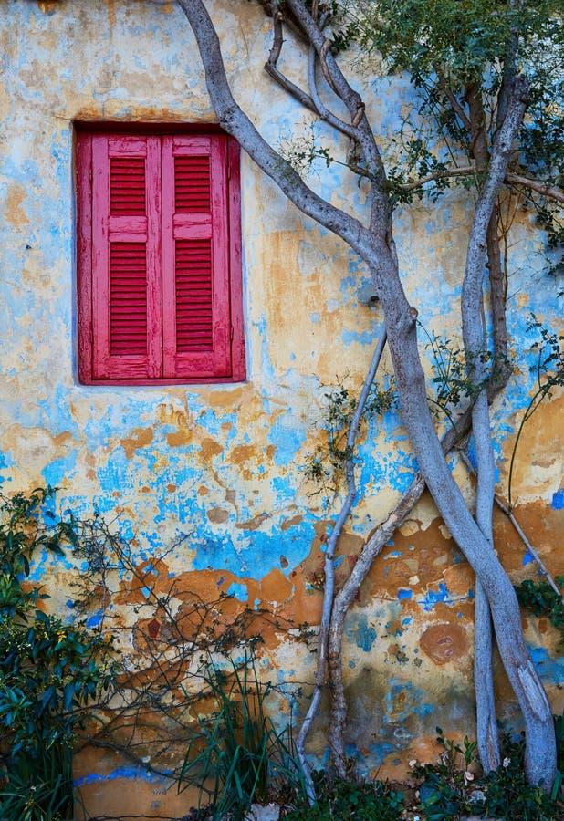在老房子` s墙壁的红色窗口有树的 免版税库存图片