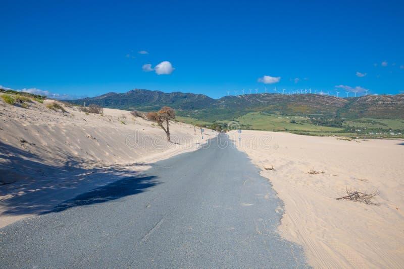 在老狭窄的农村路的沙子在卡迪士 免版税库存图片
