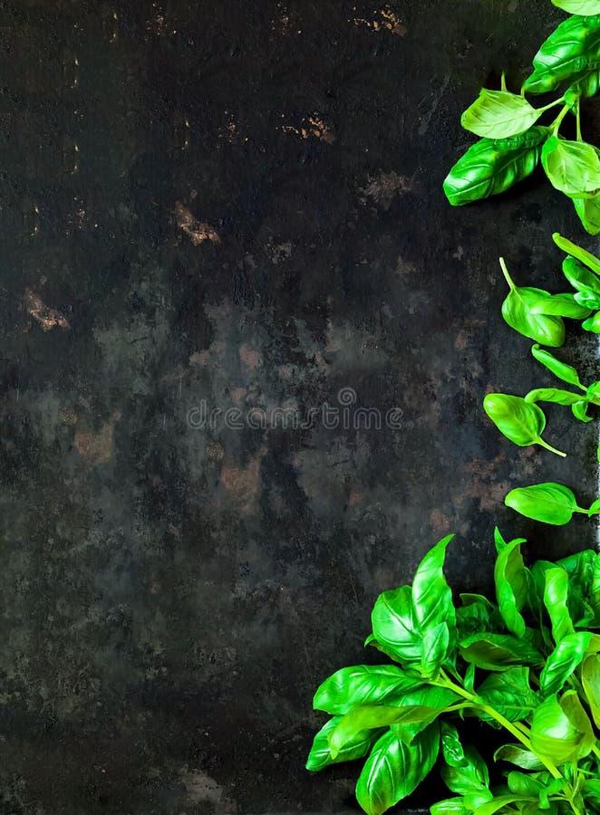 在老生锈的金属黑暗的葡萄酒背景的新鲜的菠菜  免版税图库摄影