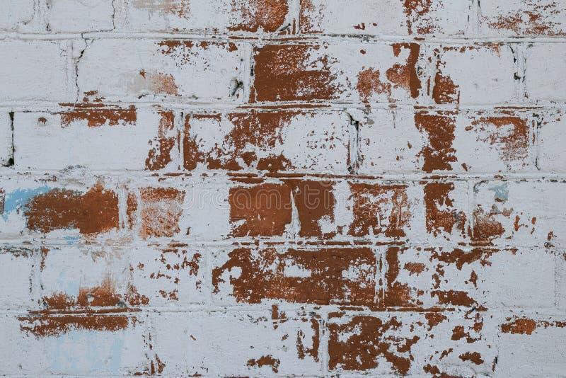 在老白色油漆特写镜头的砖墙纹理 红砖墙壁绘了白色剥的油漆 空间纹理 老难看的东西墙壁backg 图库摄影