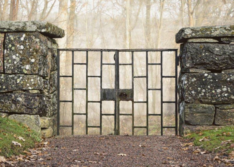 在老石墙的老铁门在有薄雾的森林前面 库存图片