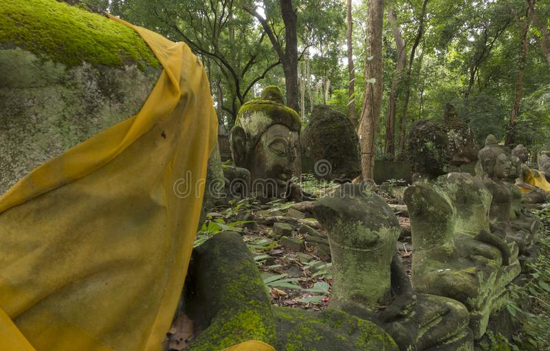 在老菩萨雕象的青苔在森林里 免版税库存图片