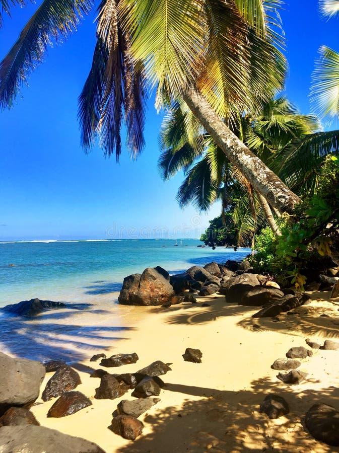 在考艾岛夏威夷海岛上的阿尼尼海滩  免版税库存图片