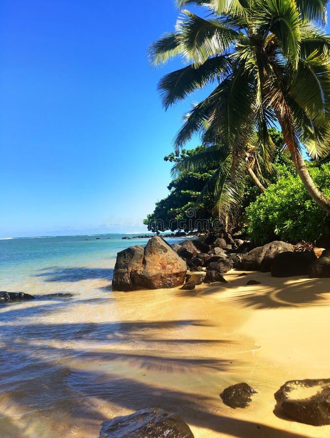 在考艾岛夏威夷海岛上的阿尼尼海滩  免版税库存照片