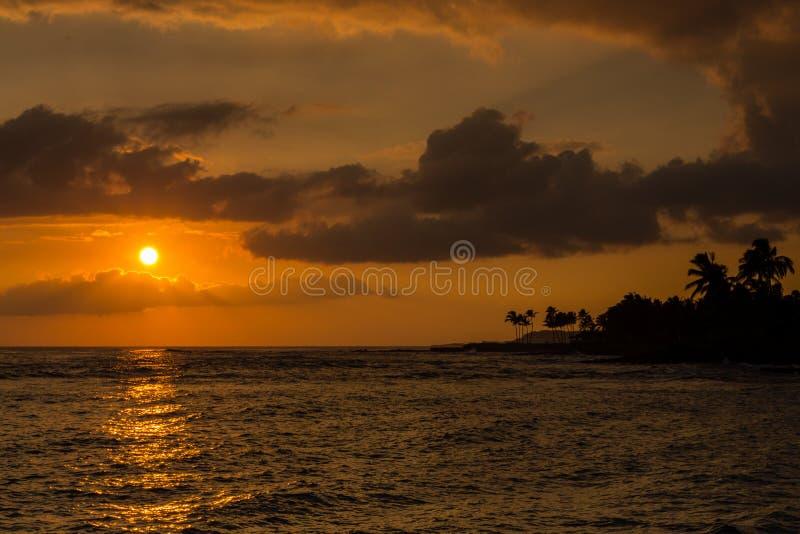 在考艾岛,有棕榈的夏威夷海岛上的桔子和金子日落  库存图片