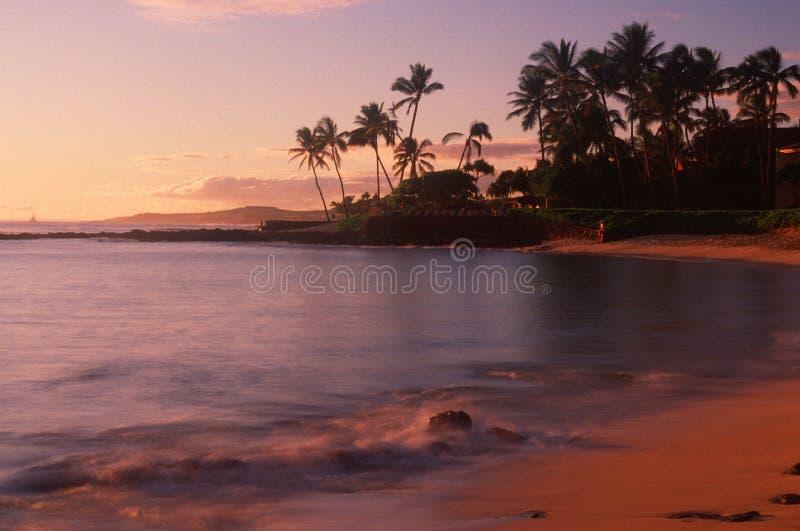 在考艾岛, HI的海滩 图库摄影