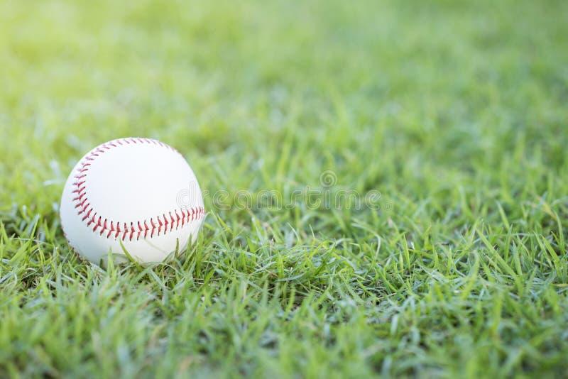 在耕地的棒球 免版税库存图片