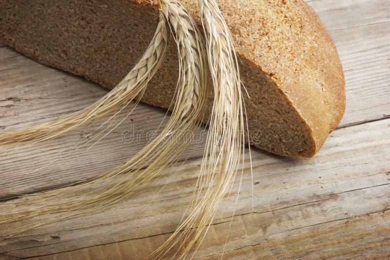 在耳朵上添面包 免版税库存照片