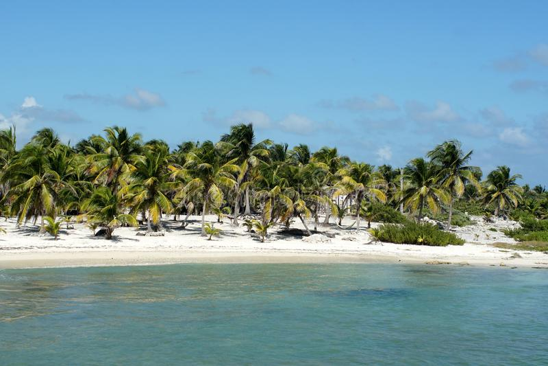 在肋前缘玛雅人,墨西哥的海滩 免版税库存照片