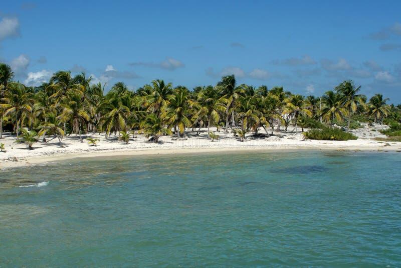 在肋前缘玛雅人,墨西哥的海滩 库存照片