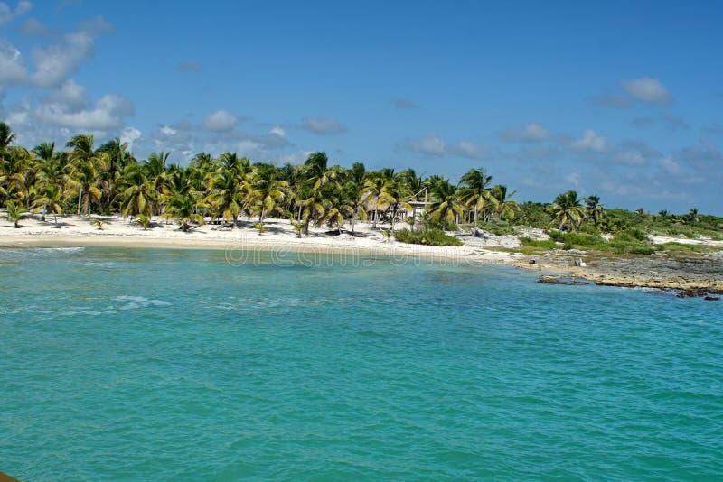 在肋前缘玛雅人,墨西哥的海滩 库存图片