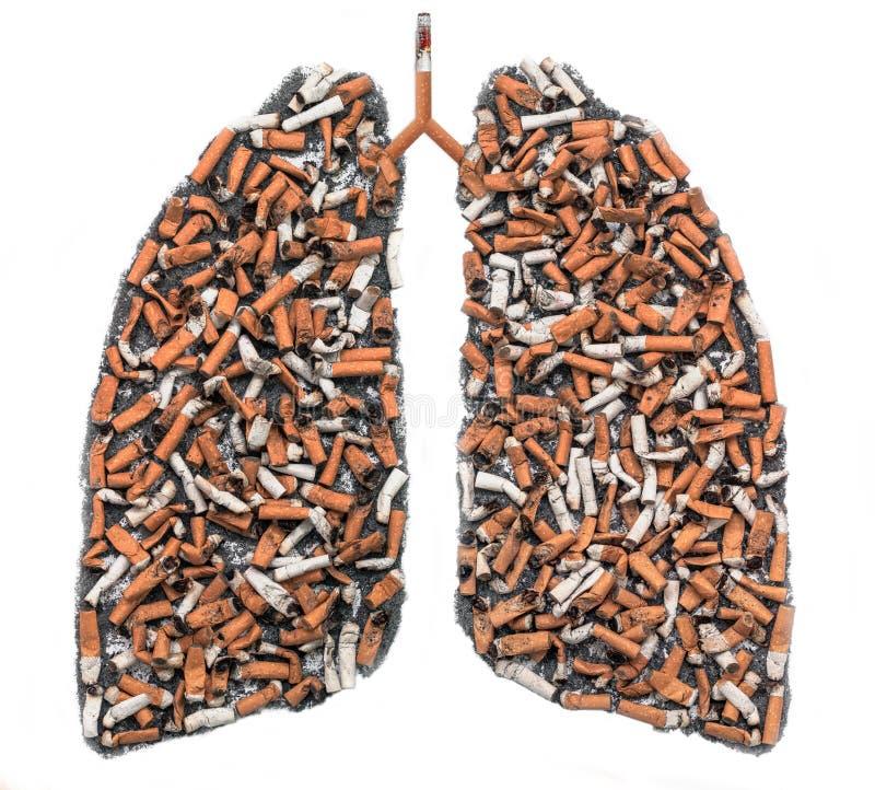 在肺等高的烟头 库存图片
