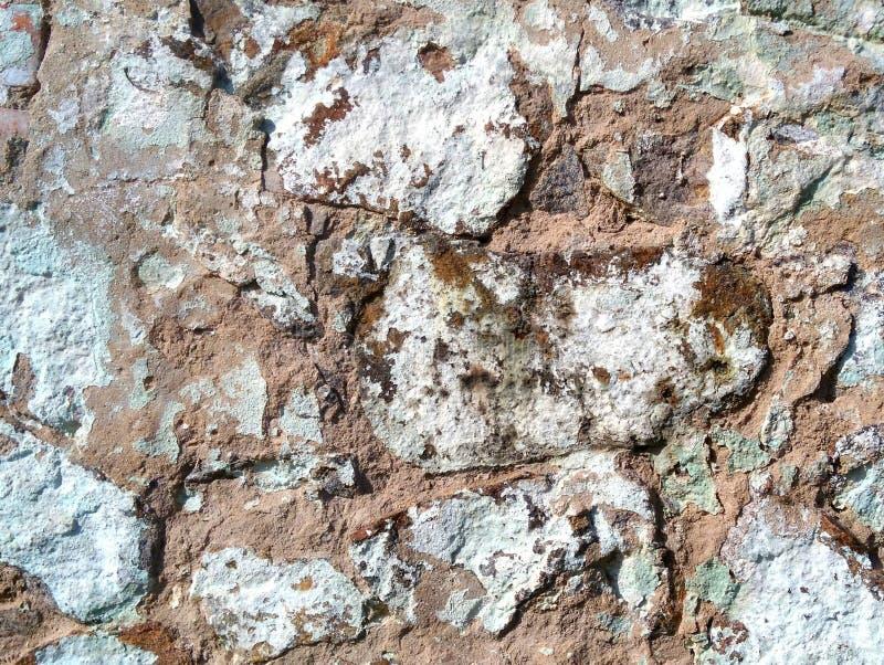 在背景是石头墙壁  库存图片