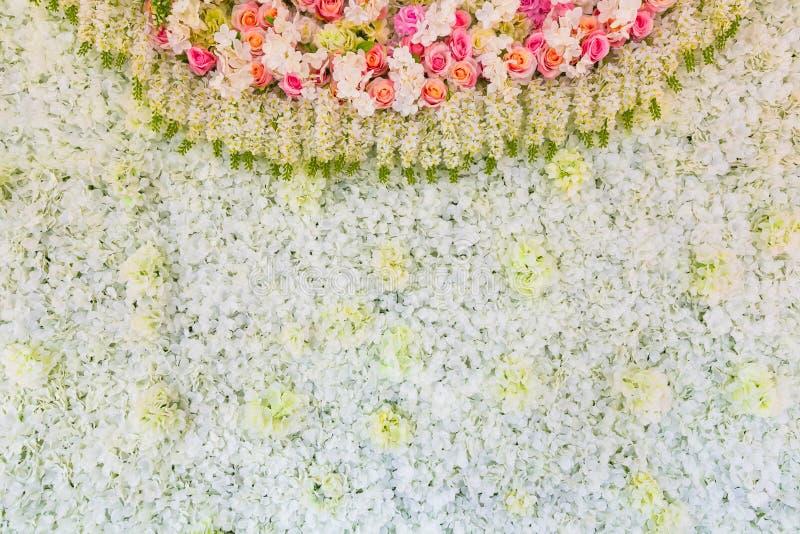 在背景的五颜六色的玫瑰花背景 免版税库存图片