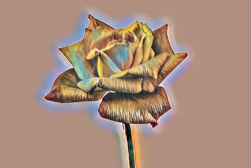 在背景的抽象黄色玫瑰 皇族释放例证