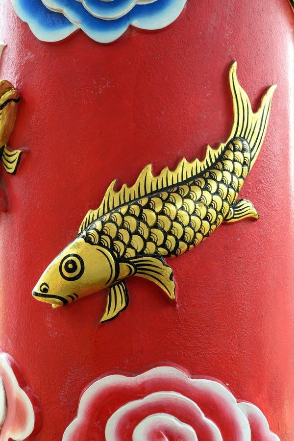 在背景红颜色的金鲤鱼 免版税库存图片