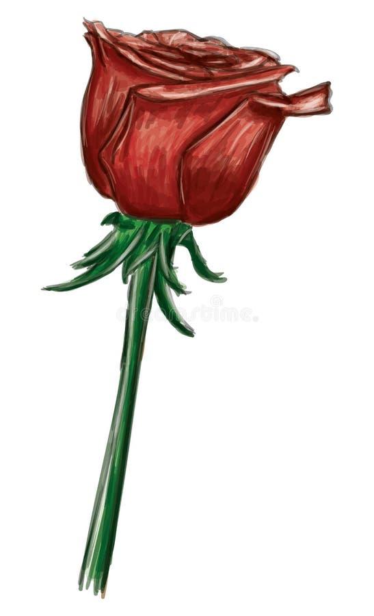 在背景隔绝的红色玫瑰 库存例证