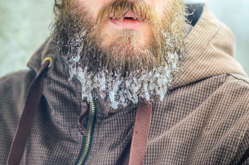 在胡子的冻结的小滴 免版税库存照片
