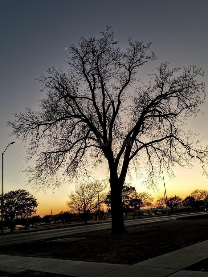 在胡德堡,得克萨斯的日落 库存图片