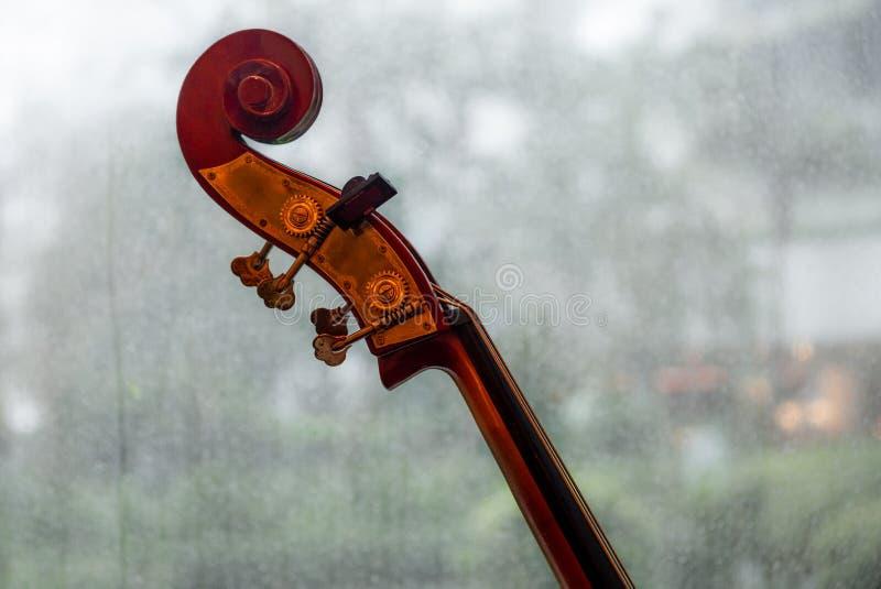 在脖子的大提琴的特写镜头,焦点和纸卷 库存图片