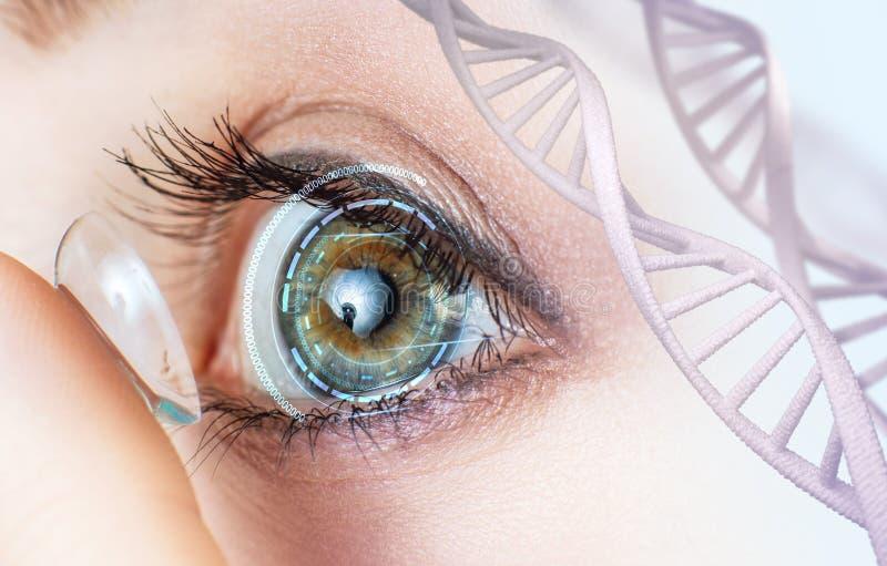 在脱氧核糖核酸词根中的妇女佩带的隐形眼镜 免版税库存图片