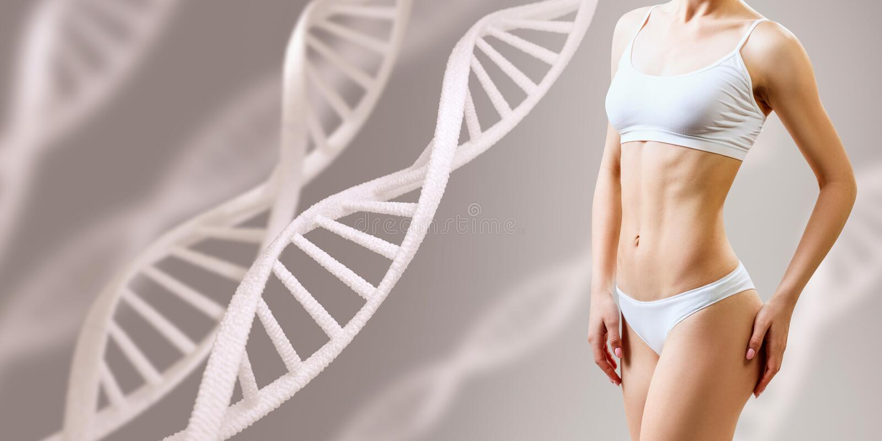 在脱氧核糖核酸词根附近的完善的运动的女性身体 好新陈代谢概念 库存图片