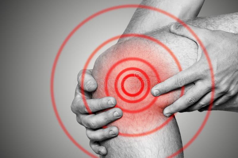 在膝盖关节的剧痛,特写镜头 单色图象,在白色背景 红颜色痛苦地区  库存照片