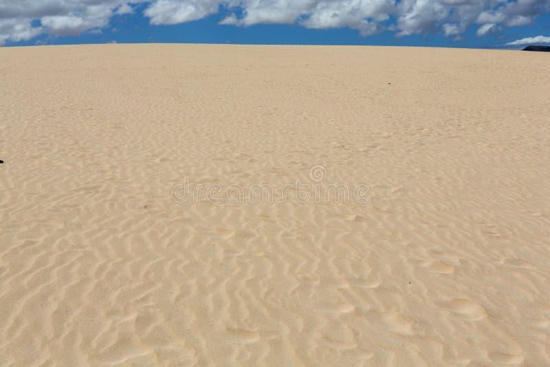 在自然保护的风,自然的公园, Corralejo,费埃特文图拉岛以后铺沙样式 库存图片