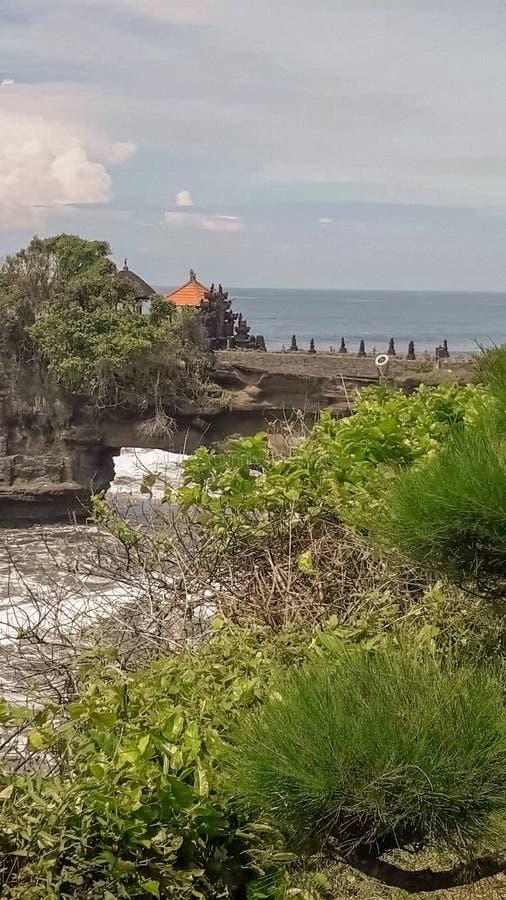 在自然岩石曲拱附近的绿色植物 免版税库存照片