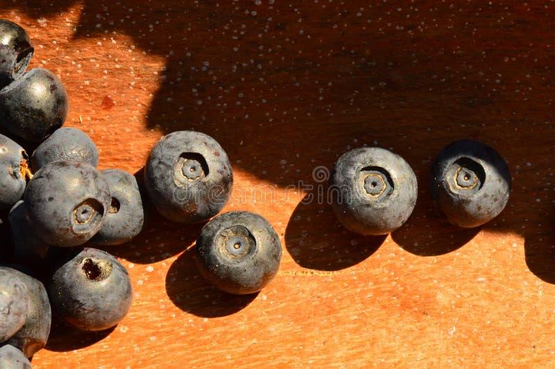 在自然木背景的明亮蓝莓新鲜的成熟莓果蓝色 图库摄影