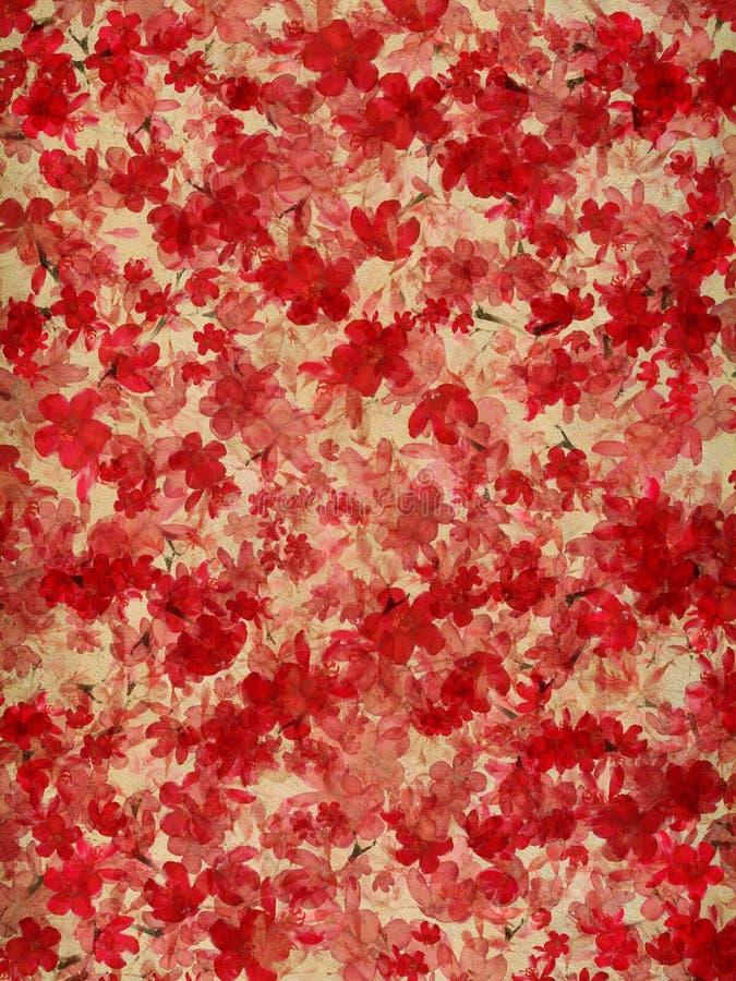 在自然本底的红色和奶油色开花花 库存例证