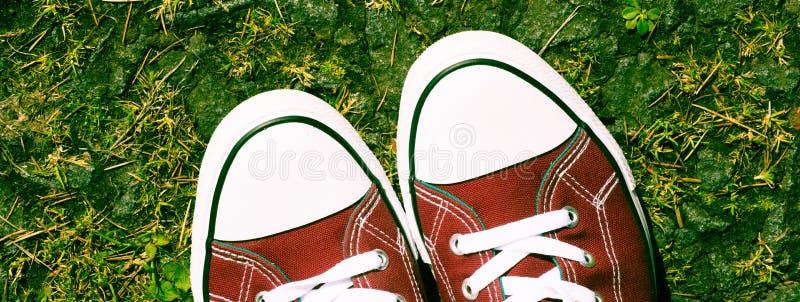 在自然环境-青年态度的紫色红色桃红色帆布运动鞋 免版税库存照片