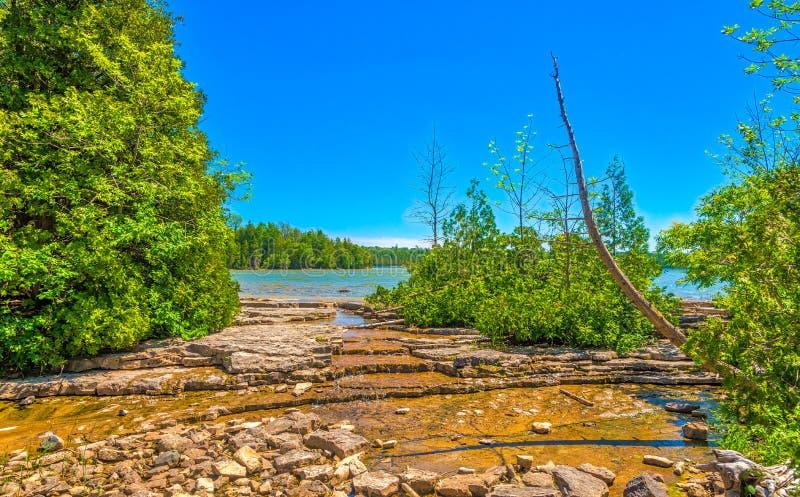 在自然的看法在Cyprus湖足迹附近池塘在布鲁斯半岛国家公园在加拿大 免版税库存照片