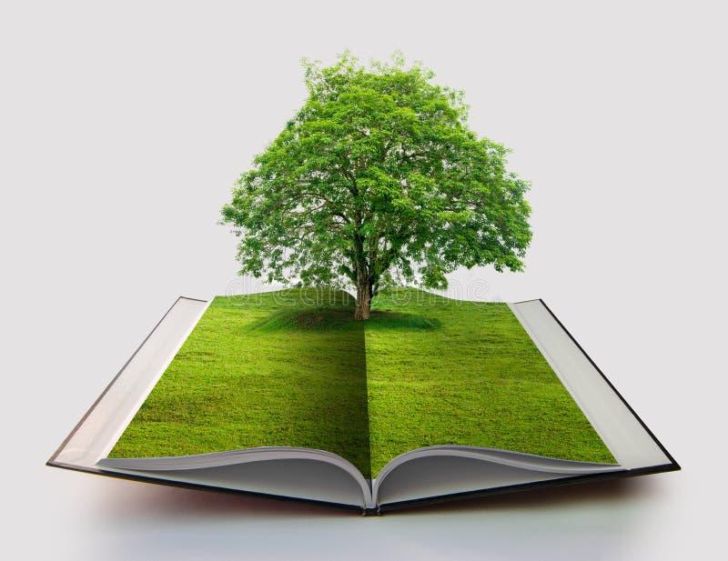 在自然纸回收的概念3d翻译书的白色开放书隔绝的自然书与草和树成长的对此 免版税库存图片