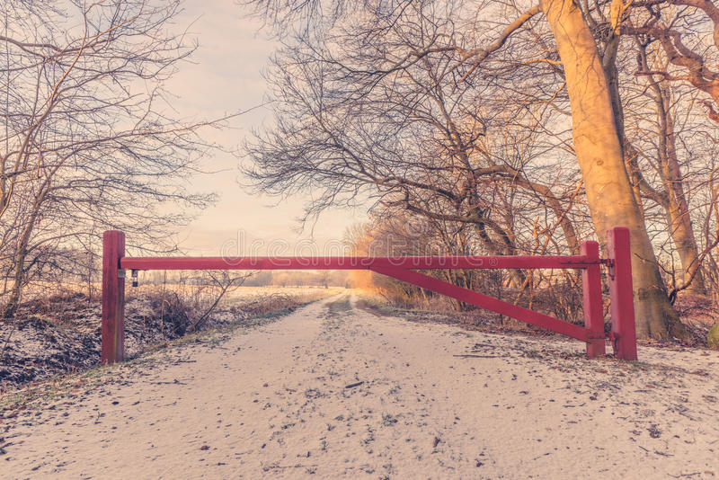 在自然道路的木障碍 库存照片