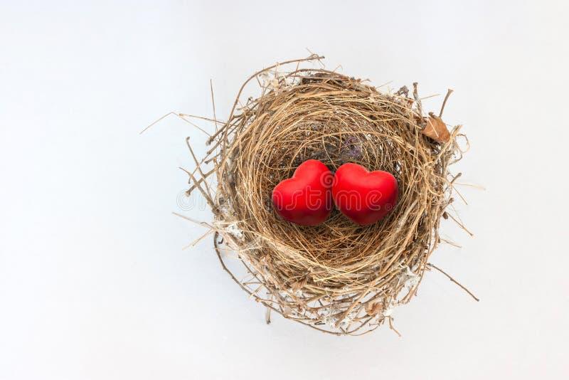 在自然鸟巢的两红色心脏 免版税库存照片