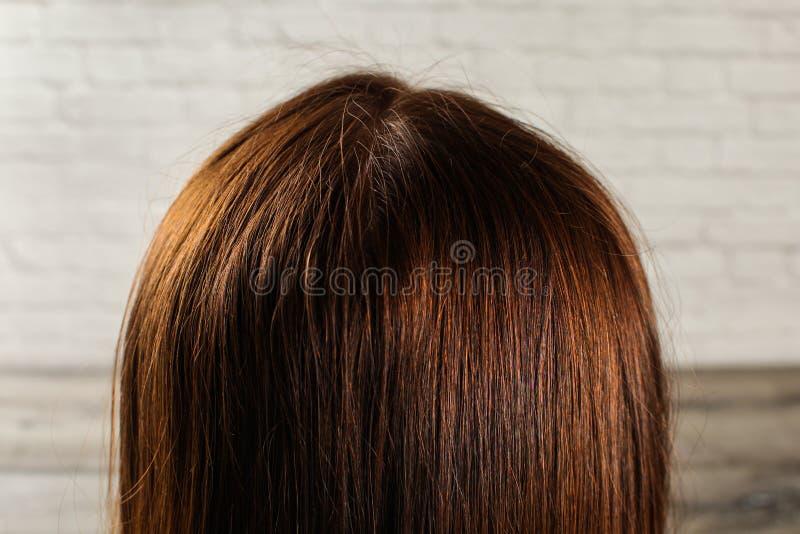在自然黑褐色妇女头发的细节从后面看见 库存图片