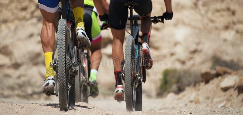 在自行车乘驾的活跃小组在乡下 库存图片