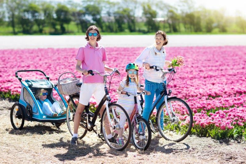在自行车在郁金香花田,荷兰的家庭 库存照片