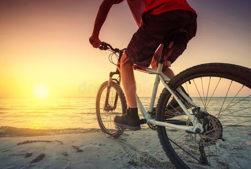 在自行车的乘驾在海滩 库存图片