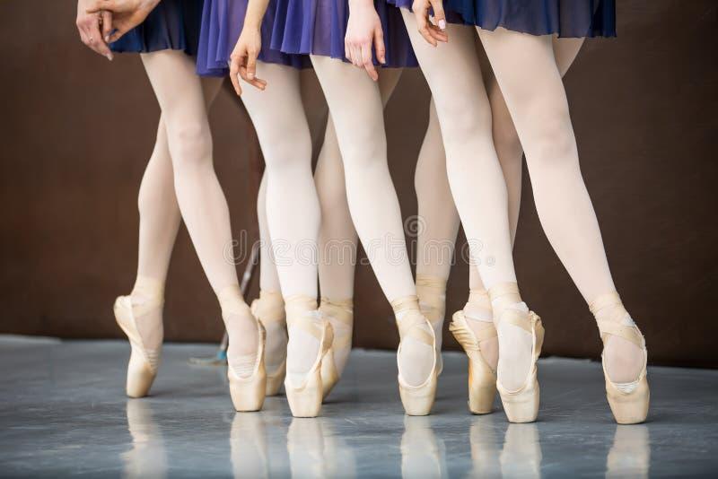 在舞蹈课的五个跳芭蕾舞者在纬向条花附近 仅行程 因此 库存图片