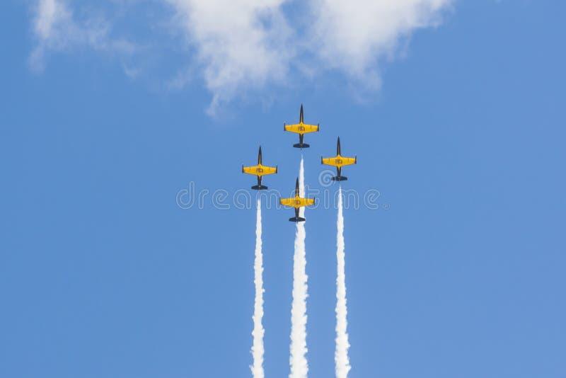 在航空体育比赛期间,特技动作飞行航空L-159美国皮革化学家协会鲁斯在空气的 库存照片