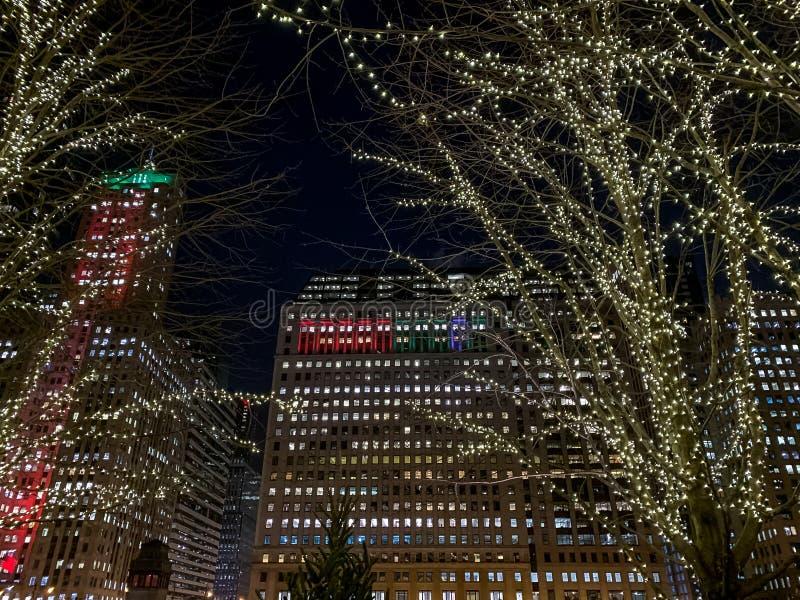 在芝加哥都市风景的圣诞节/假日光在12月 库存照片